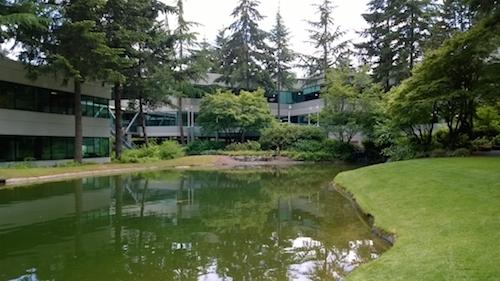 Microsoft Lake Bill