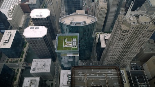 Willis Tower Chicago Skydeck Green Roof