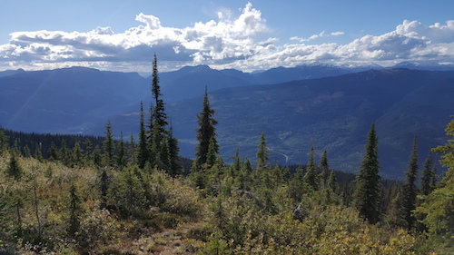 Mount Revelstoke Summit View
